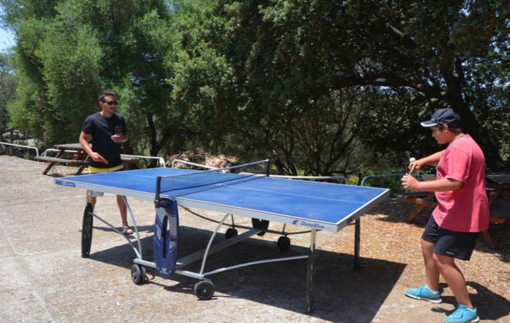 Slide mise à disposition d'une table de ping pong