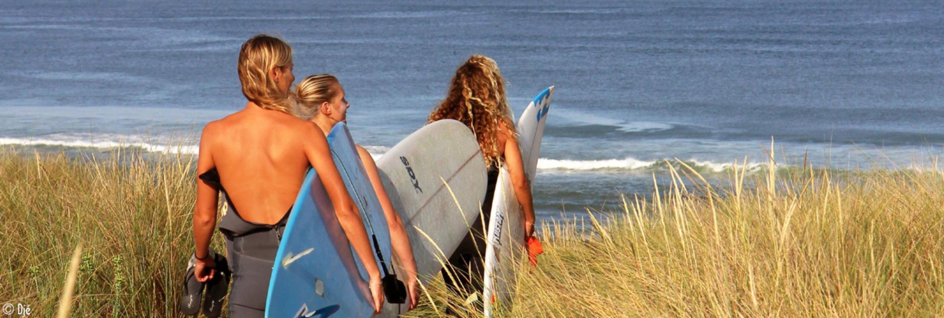 Slide Sortie surf