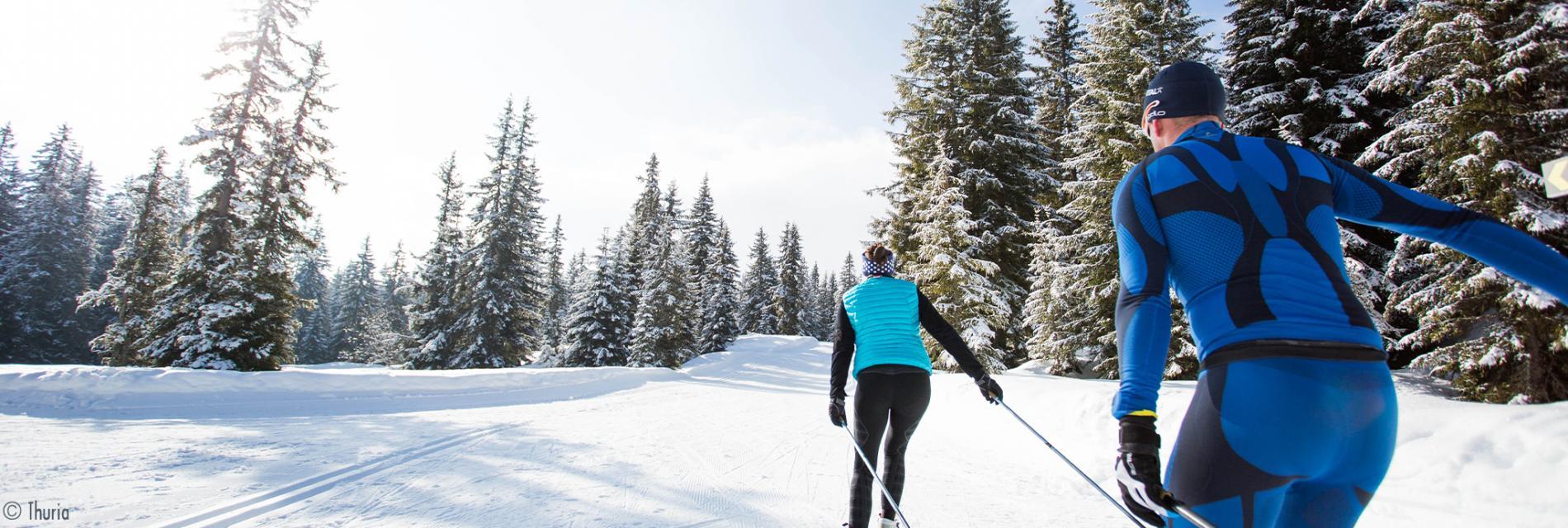 Slide les paysages de ski de randonnées
