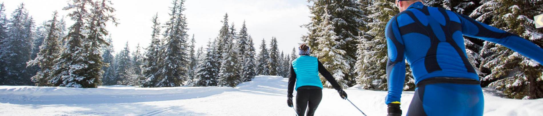 Slide ski de fond